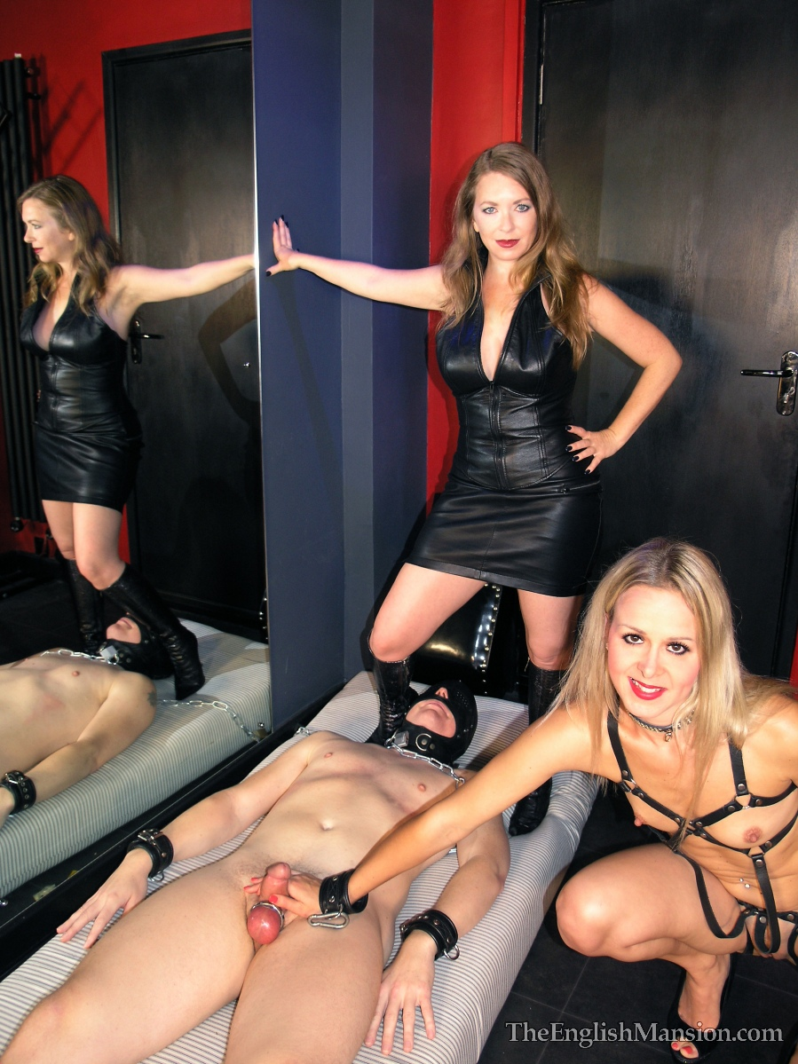 Watch or Download - TheEnglishMansion - Mistress T, Sub Suzie - The Leftovers Part 1-3 - handjob, femdom handjob, tied handjob - Release [28-11-2016]