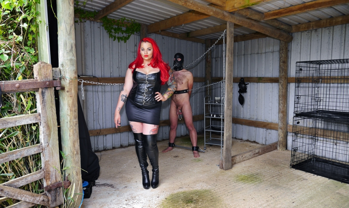 Watch or Download - TheEnglishMansion - Miss Indie Fox - Becoming Her Slave Complete - abuse, ballbusting, cbt, humiliation, female - Release [29-01-2017]
