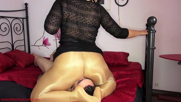 Watch or Download - Mistress Ezada Sinn – Worshiped through My shiny pantyhose - worship, ass smother, butt drops - Release [04-02-2017]
