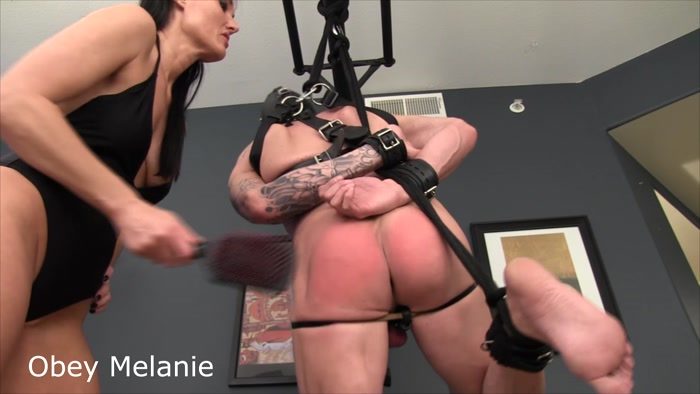 Watch or Download - Obey Melanie - Please Spank my Testicles - ballbusting, cbt, humiliation, female supremacy - Release [20-06-2017]