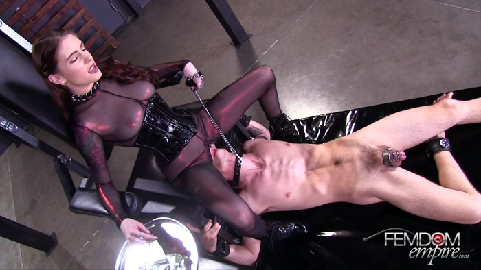 Watch or Download - Femdom Empire – Queening Anna - face fucking, smothering, cruel facesit - Release [02-09-2017]