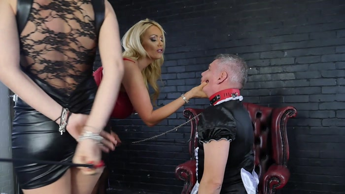 Watch or Download - Lucy Zara Lilly Roma - Sissy Training - toilet, toilet slave training, HUMILIATION - Release [28-10-2017]
