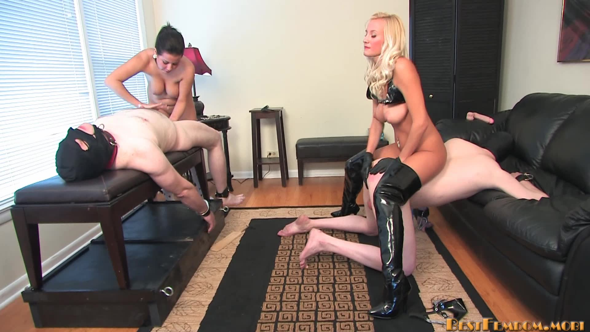 Femdom Chat Rooms