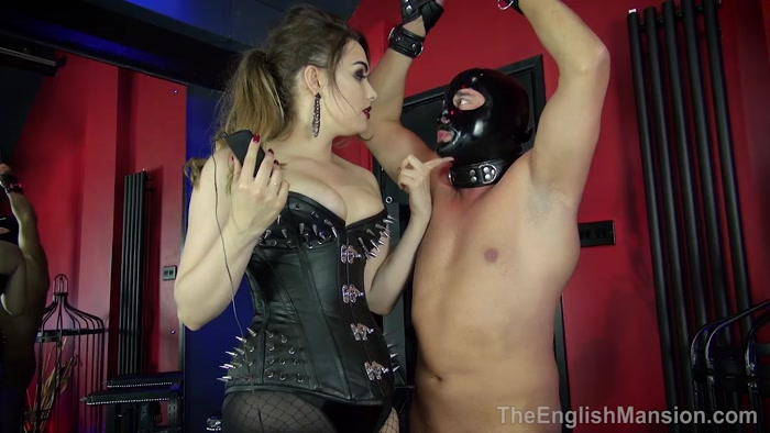 Watch or Download - TheEnglishMansion - Goddess Serena - Beating His Cock - handjobs, femdomcc, forced orgasms, milking - Release [16-12-2018]