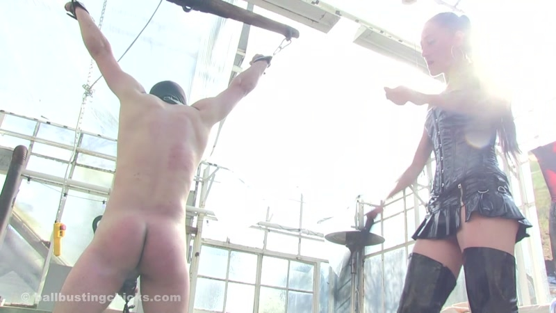 Ball Busting Chicks – Ball and Chain. Starring Bijou  [Ball Busting Chicks, whipping, caning]