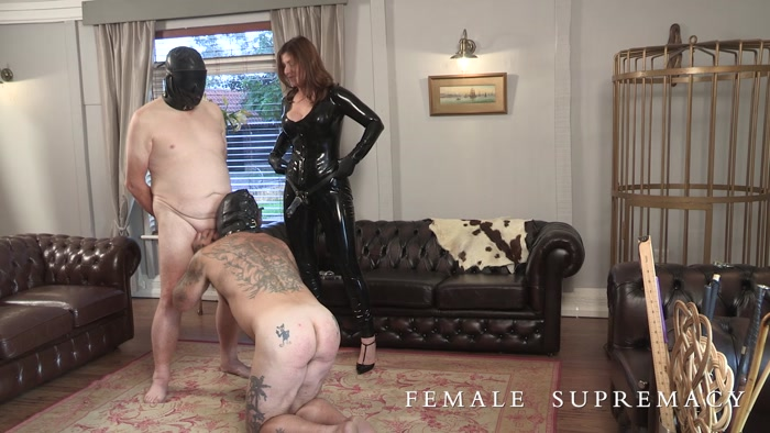 Watch or Download - Female Supremacy - Dirty old B'stards - Baroness Essex - HUMILIATION, TEASE and DENIAL, MASTURBATION - Release [13-01-2019]