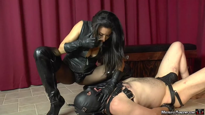 Watch or Download - Mistress Tangent - Stay Put - Mistress Tangent, spitting, spit fetish - Release [13-03-2019]