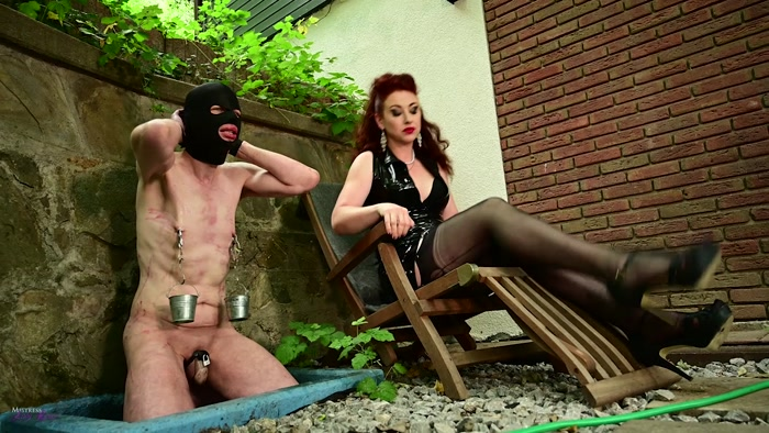 Mistress Lady Renee - Not Suffered Enough For Me (720 HD) - stomping, cock and ball crush