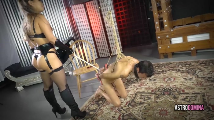 AstroDomina - Slave Transaction - Diaper, Diaper Discipline, Diaper Fetish